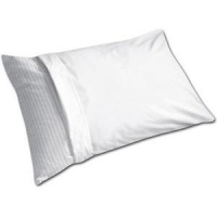 Pillow Protector Vinyl With Zipper (Blue), Each
