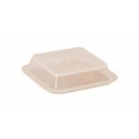 Autoplas Denture Box Lid Only